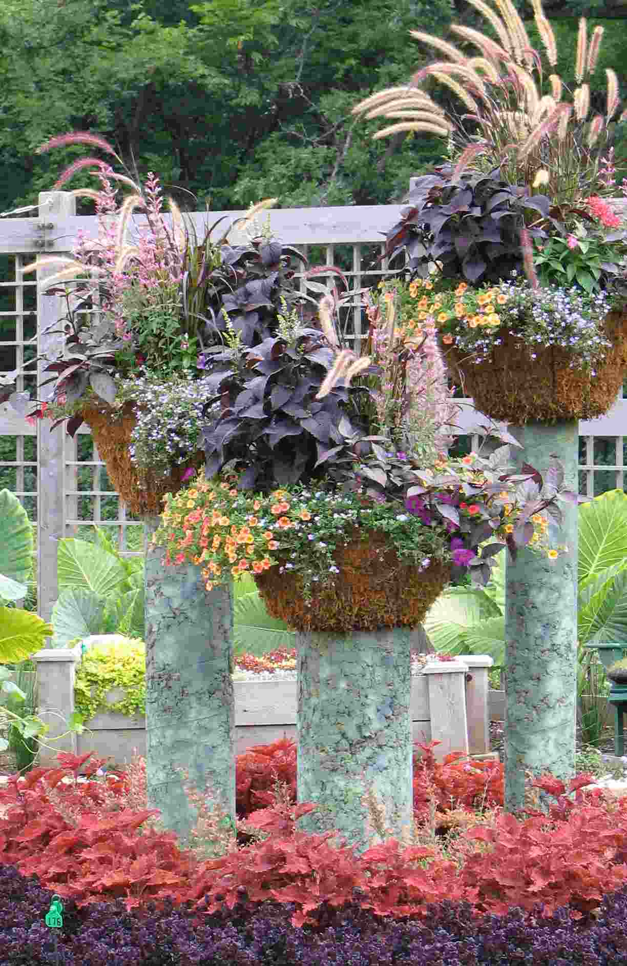 Patio Gardening Containers Home Design Ideas and Pictures